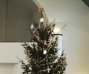 Elkészült a közös karácsonyfánk